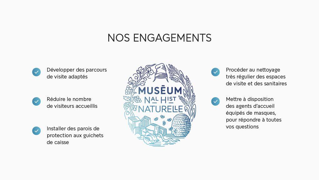 Déconfinement : les engagements du Muséum national d'Histoire naturelle © MNHN