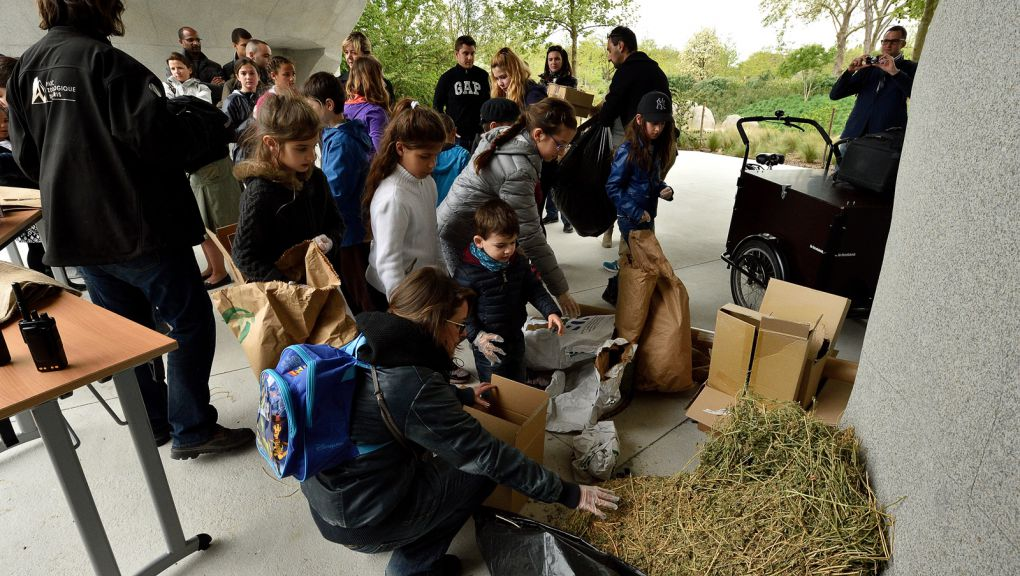 Préparation de l'enrichissement pour les babouins © MNHN - F-G. Grandin