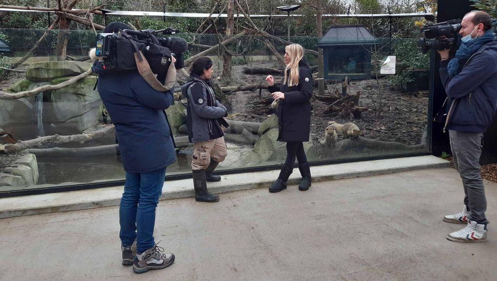 Tournage au Parc zoologique de Paris © MNHN - Parc zoologique de Paris