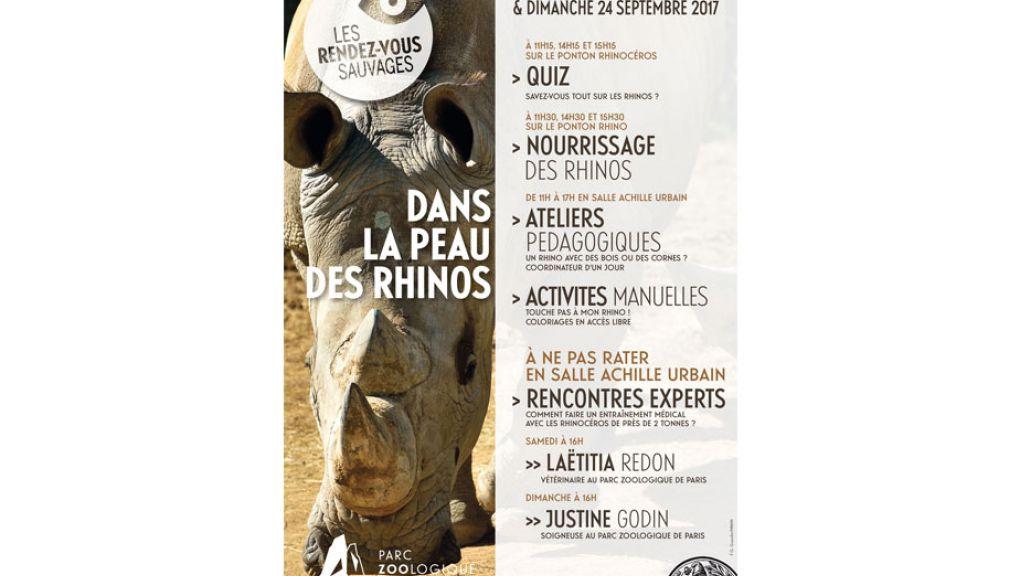 Affiche de l'événement Rendez-vous sauvages - Dans la peau des rhinos