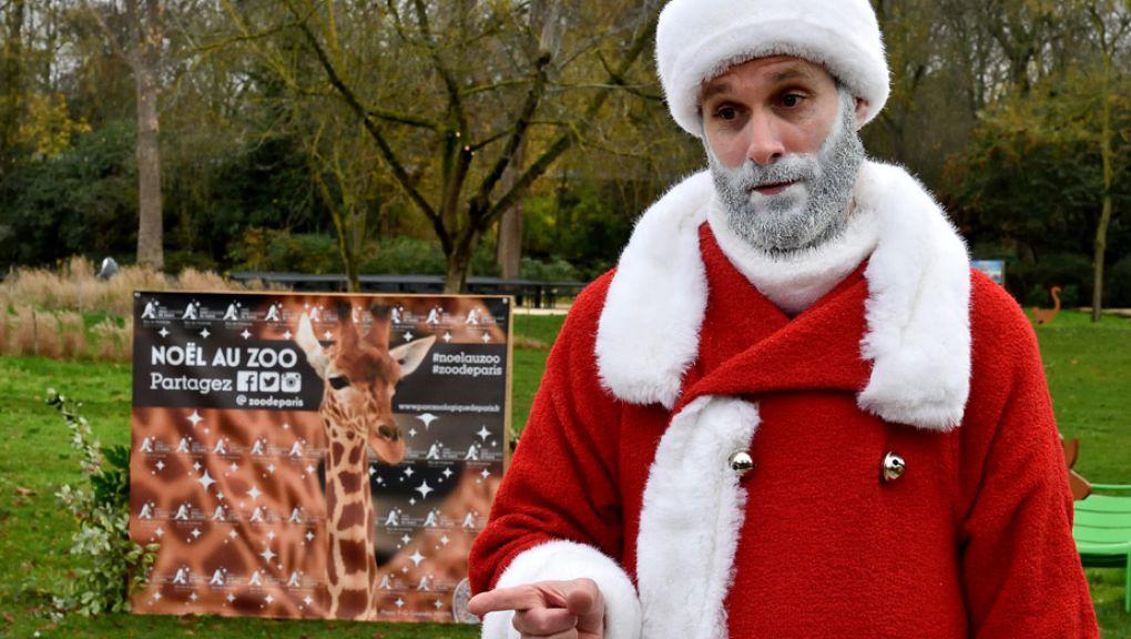 Le Père Noël au Parc Zoologique de Paris © MNHN - François Grandin