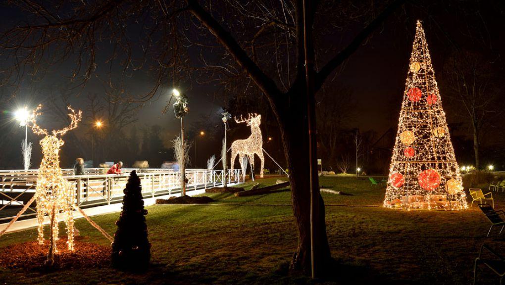 Patinoire illuminée du Parc Zoologique de Paris © MNHN - François-Gilles Grandin