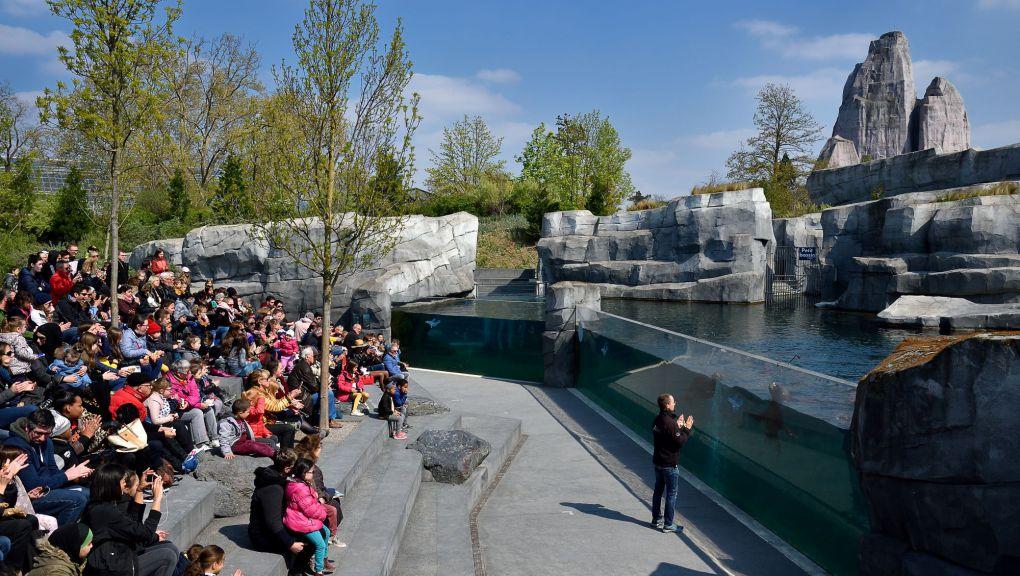 Animation pédagogique au Parc zoologique de Paris ©  MNHN - F.-G. Grandin