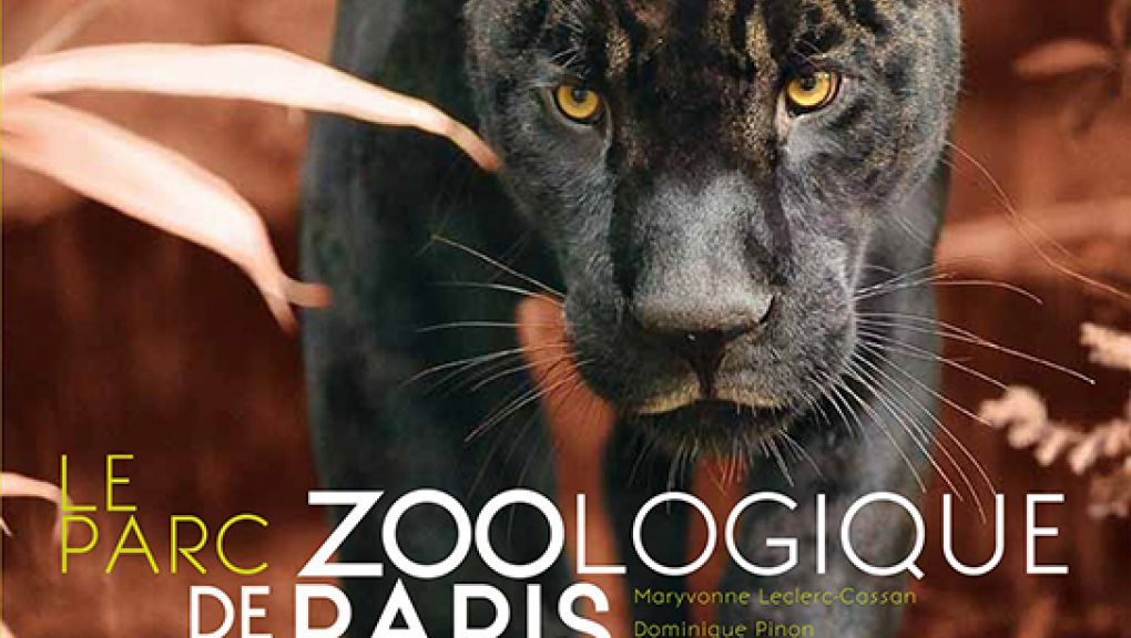 Zoological Park of Paris, from its origins to the renovation
