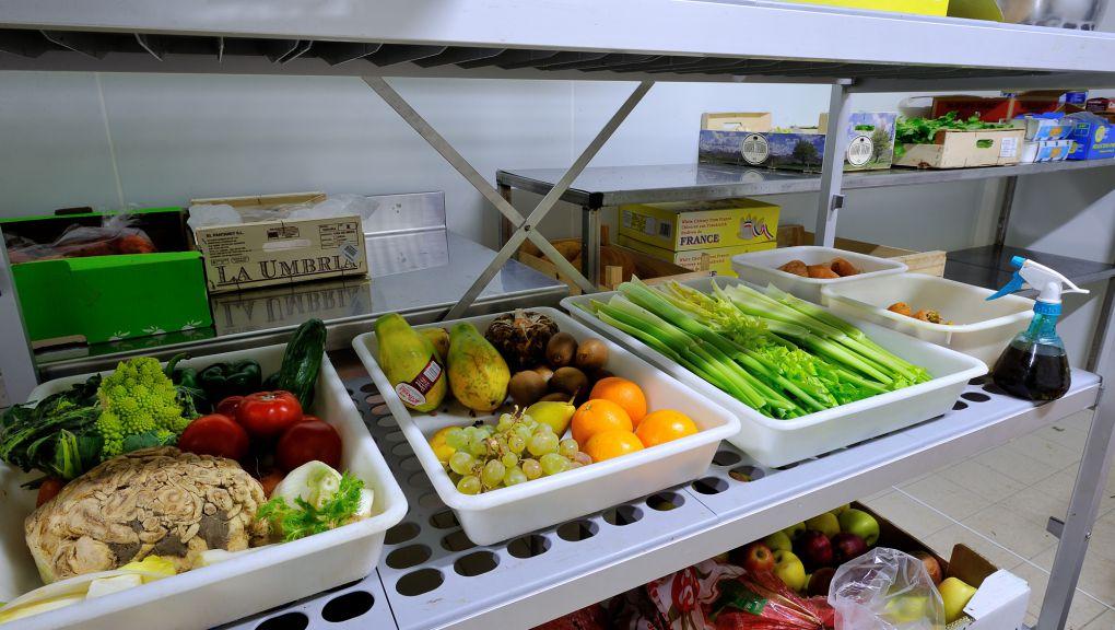 Préparation des nourrissages © MNHN - F.-G. Grandin