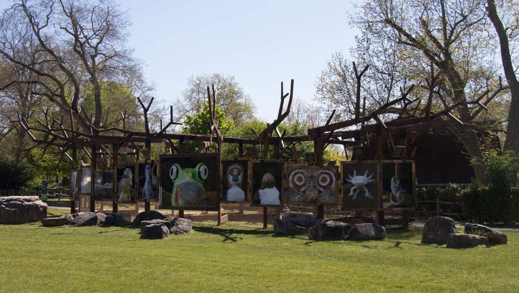 Vue de l'exposition Regards fascinants au Parc zoologique de Paris © MNHN