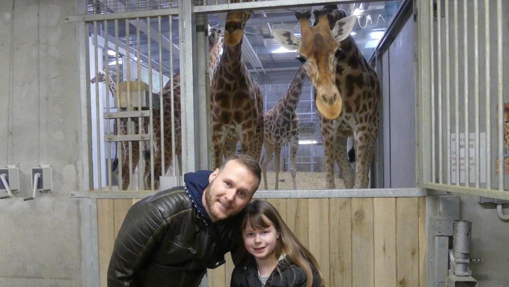 """Souvenir avec les girafes pour les gagnants du jeu """"Une nuit au zoo"""" © MNHN – C. Duwicquet"""