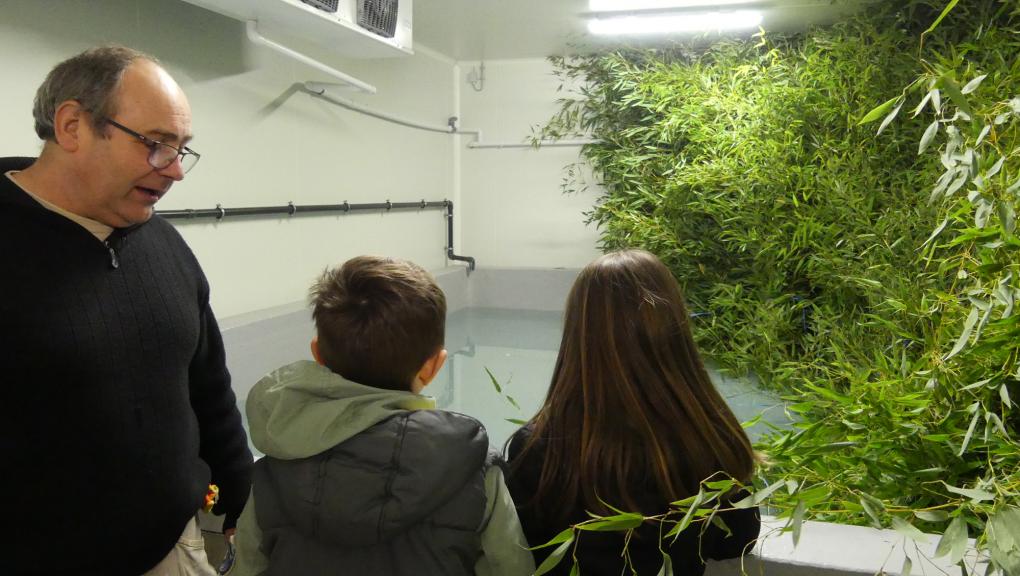 Visite du frigo où est conservé le bambou dont se nourrissent les lémuriens © MNHN – C. Duwicquet