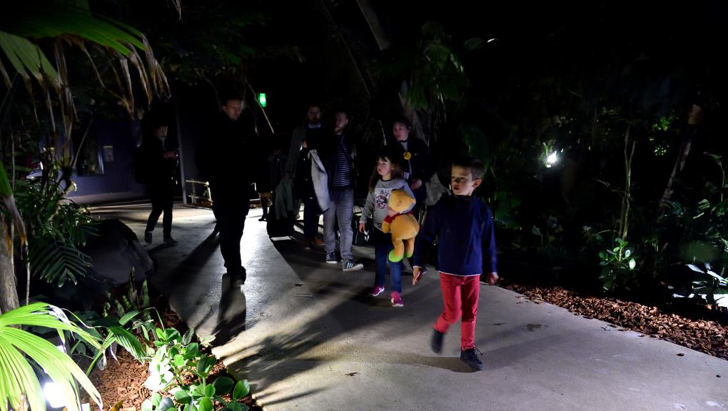 """Découverte de la serre de nuit par les gagnants du jeu-concours """"Une nuit au zoo"""" © MNHN – F-G. Grandin"""