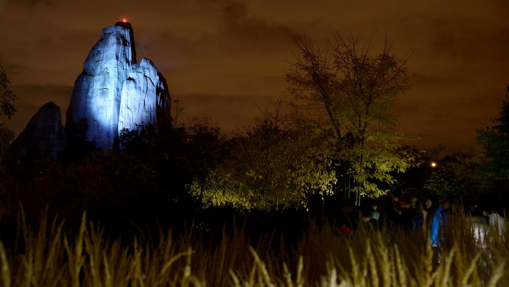 La nuit au parc © MNHN – F-G. Grandin