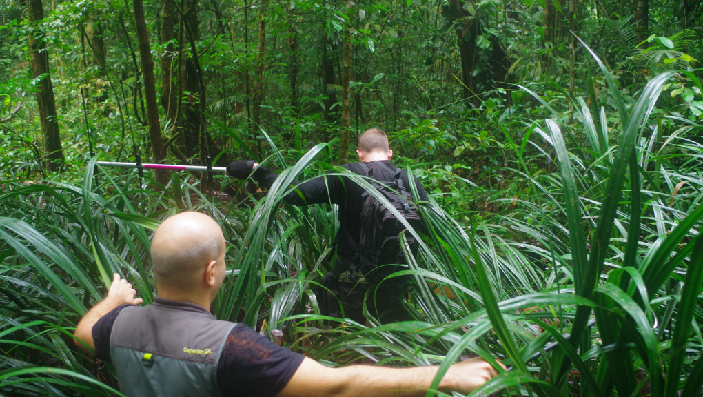 Olivier Marquis et David Oudjani se fraient un chemin dans la forêt tropicale © MNHN – O. Marquis