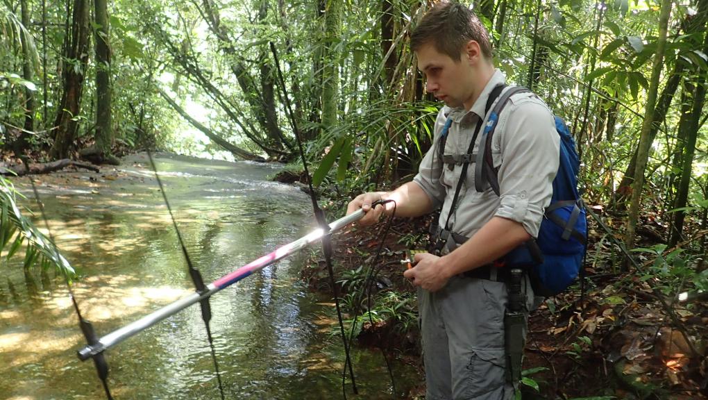Jérémy Lemaire cherche le signal des caïmans nains équipés d'un émetteur © MNHN – O. Marquis