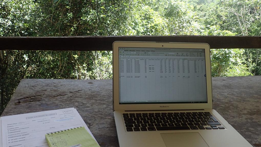 Un bureau en plein cœur de la Réserve naturelle des Nouragues © MNHN – O. Marquis