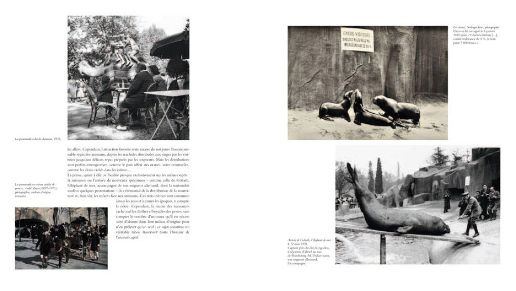 """Extrait 4 de l'ouvrage """"Le Parc Zoologique de Paris, des origines à la rénovation"""""""