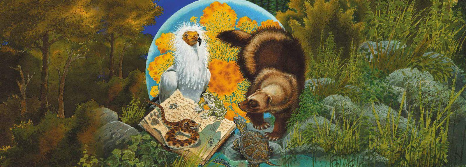 Rendez-vous sauvage Automne - En quête d'espèces fascinantes © L. Verron
