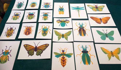 Ateliers créatifs : Insectes, qui s'en tamponne - Ateliers écotones © Ateliers écotones