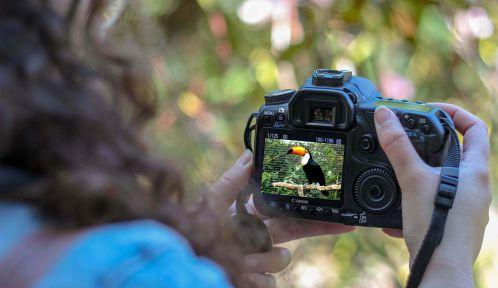 Balade photographique au Parc zoologique de Paris © Micheile Henderson