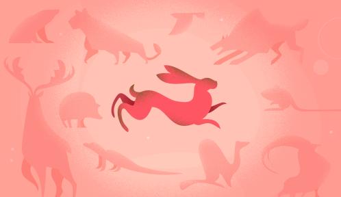 Web-série Humains et autres animaux © MNHN