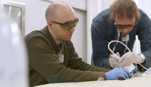 La thérapie par laser expérimentée par les vétérinaires | © Guy Beauché et Guillaume Maidatchevsky / Gédéon Programmes et MFP