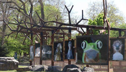 Exposition Regards fascinants au Parc zoologique de paris © Photoclimat